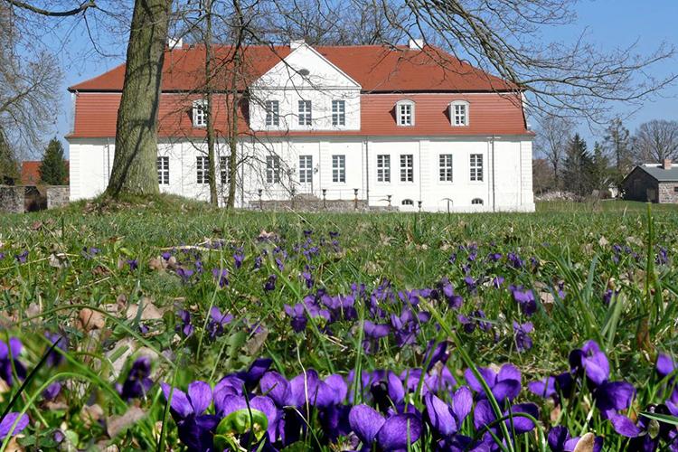 Jagdschloss Kotelow Blumen