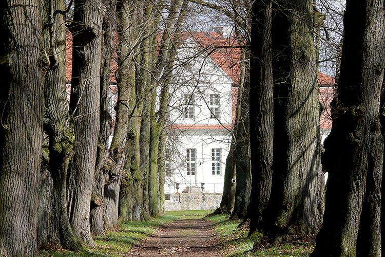 Allee Jagdschloss Kotelow